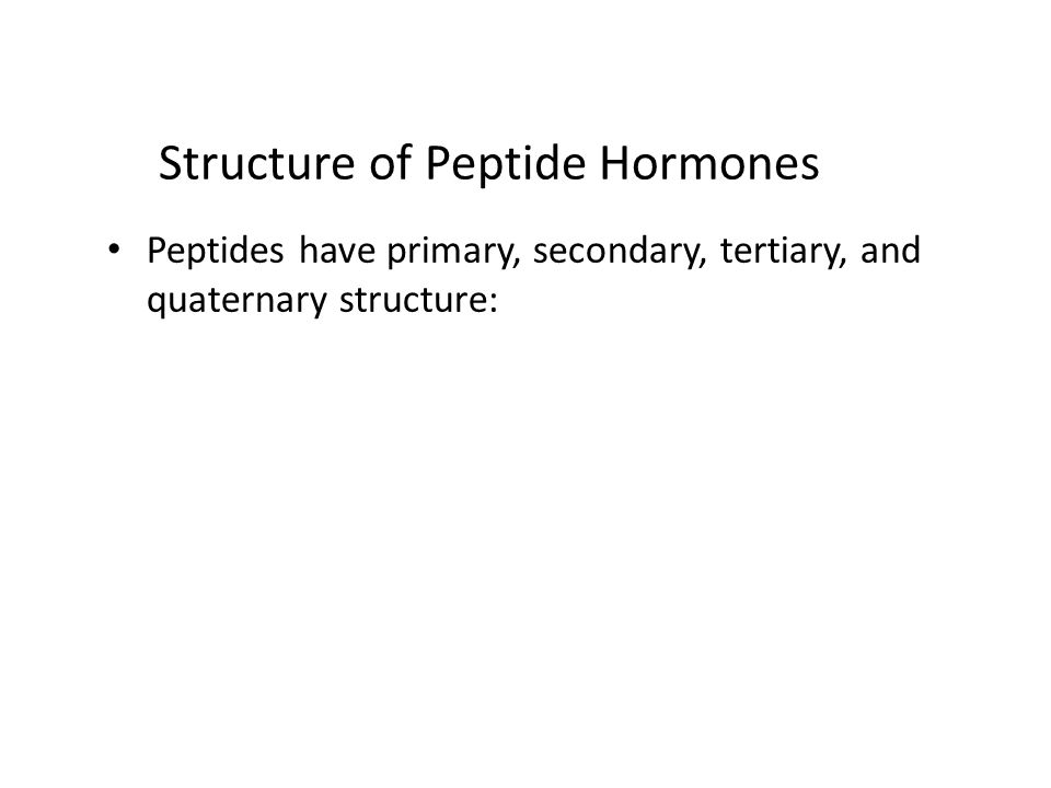 Structure of Peptide Hormones Peptides have primary, secondary, tertiary, and quaternary structure: