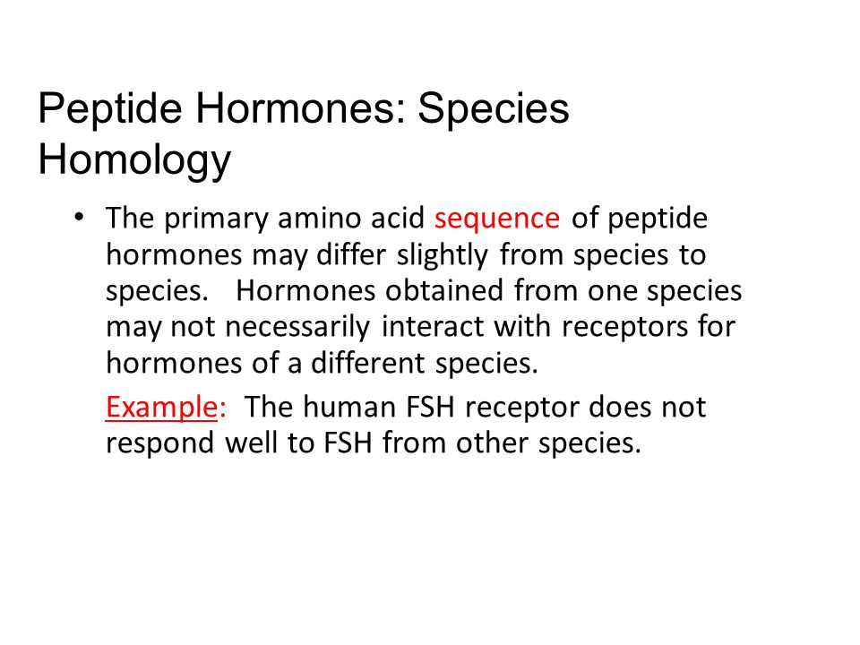 The primary amino acid sequence of peptide hormones may differ slightly from species to species.