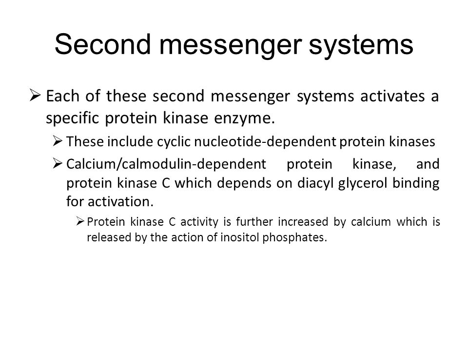 Second messenger systems Each of these second messenger systems activates a specific protein kinase enzyme.