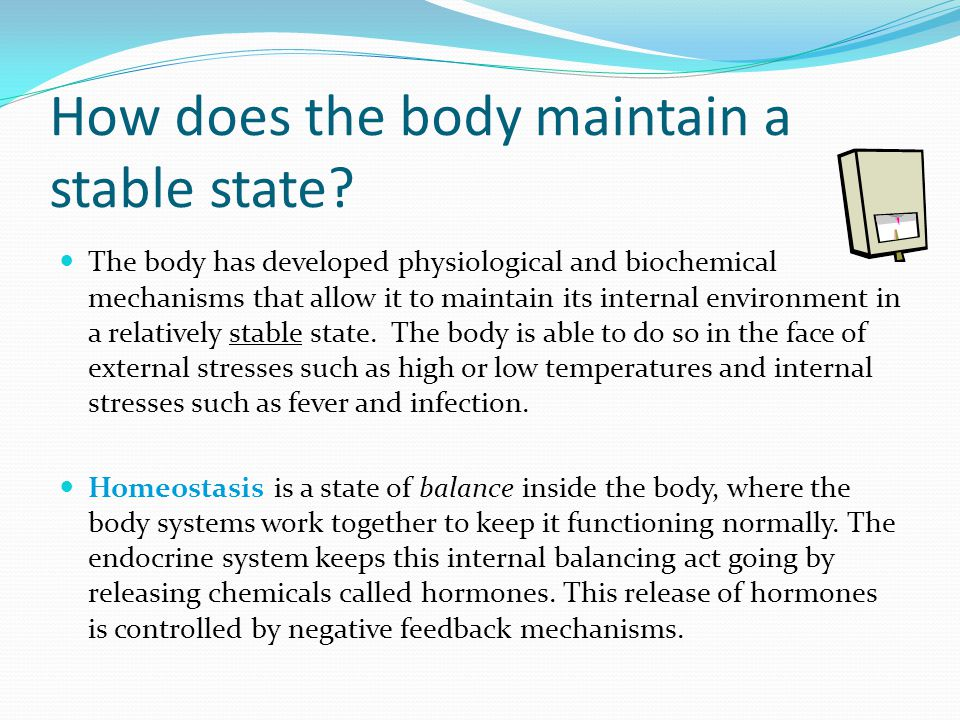 How does the body maintain a stable state? The body has developed physiological and biochemical mechanisms that allow it to maintain its internal envi