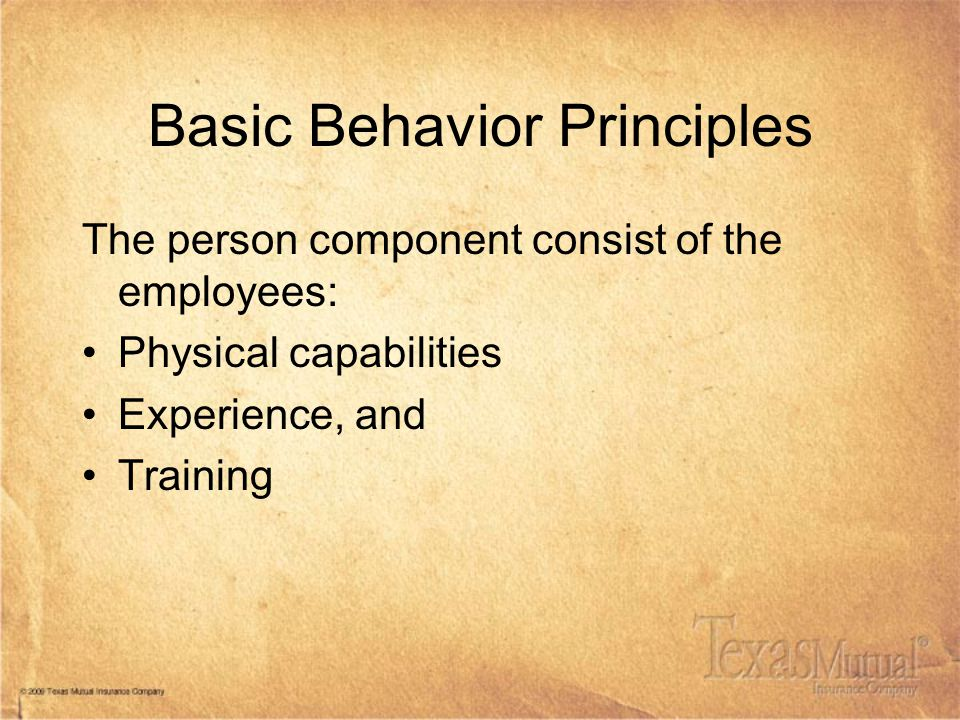 Basic Behavior Principles The person component consist of the employees: Physical capabilities Experience, and Training
