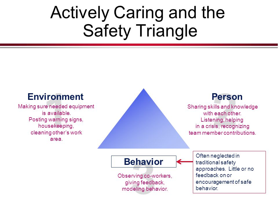 2 Actively Caring and the Safety Triangle 3 Person Sharing skills and knowledge with each other.