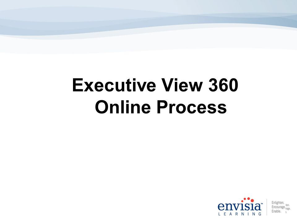 Executive View 360 Online Process