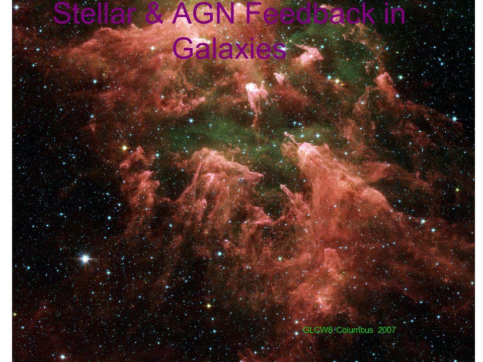 Stellar & AGN Feedback in Galaxies GLCW8 Columbus 2007