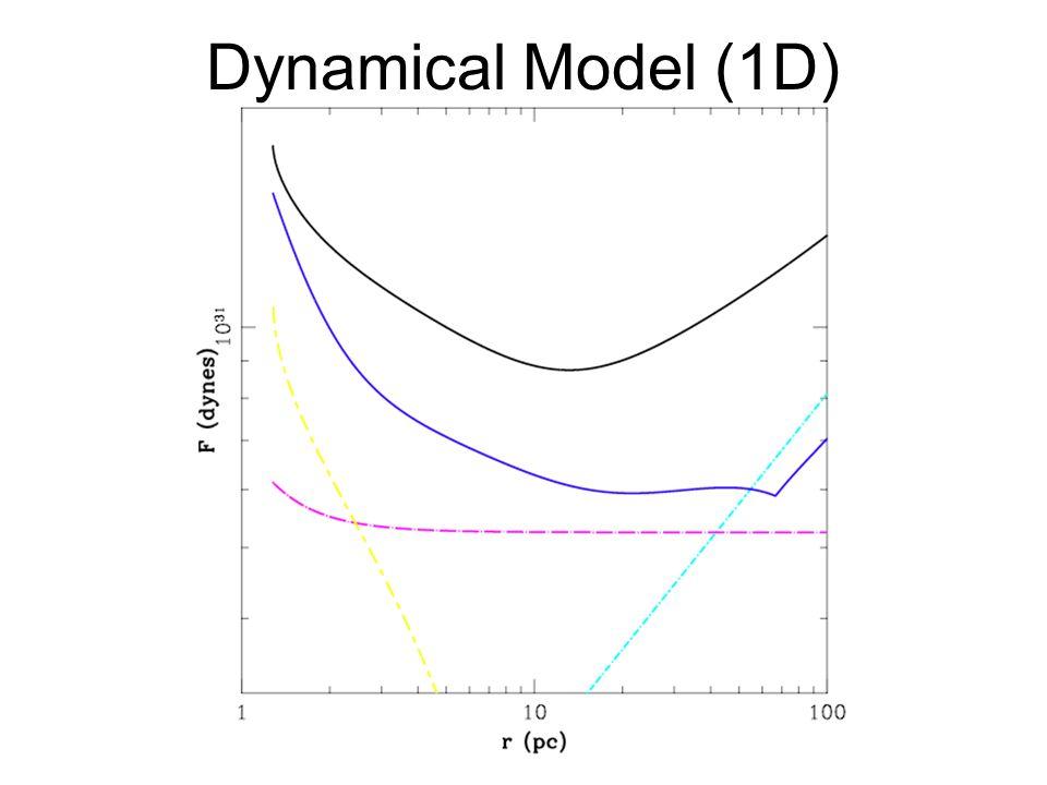 Dynamical Model (1D)