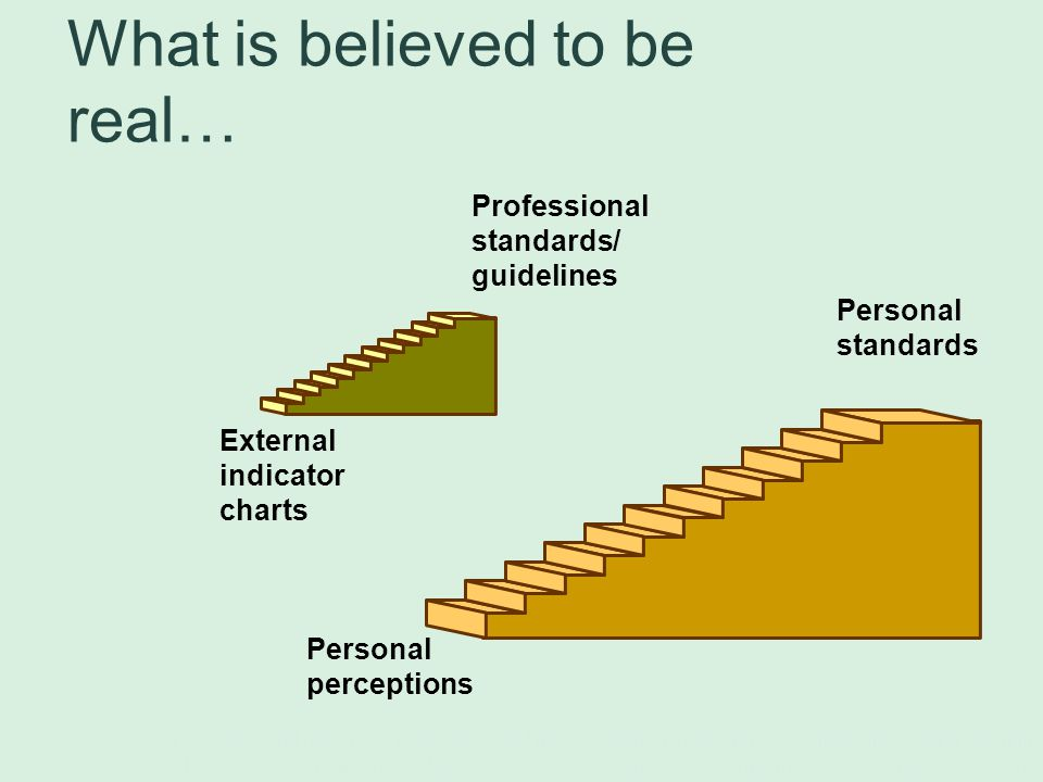 Professional standards/ guidelines External indicator charts What is believed to be real… Personal standards Personal perceptions Fox, R.D.
