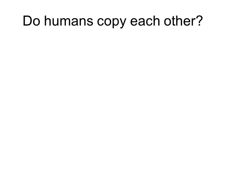 Do humans copy each other
