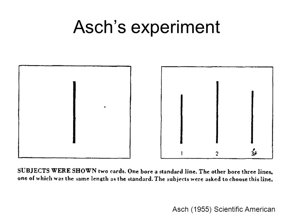Aschs experiment Asch (1955) Scientific American