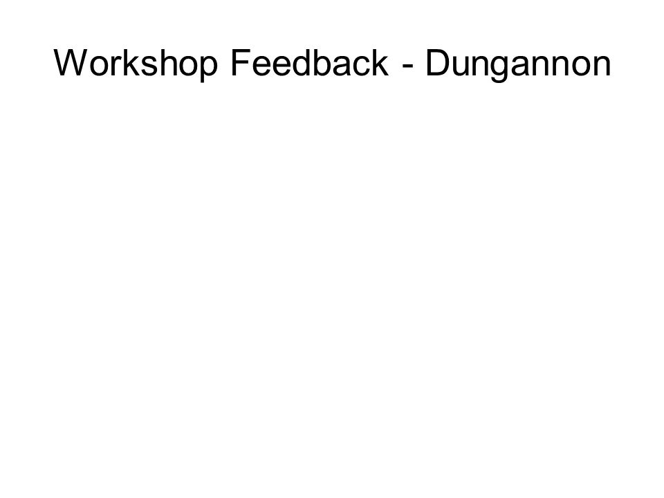 Workshop Feedback - Dungannon