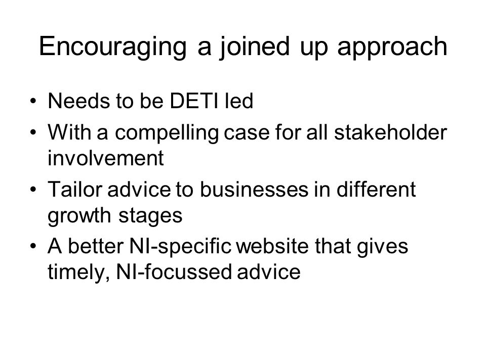 Encouraging a joined up approach Needs to be DETI led With a compelling case for all stakeholder involvement Tailor advice to businesses in different growth stages A better NI-specific website that gives timely, NI-focussed advice