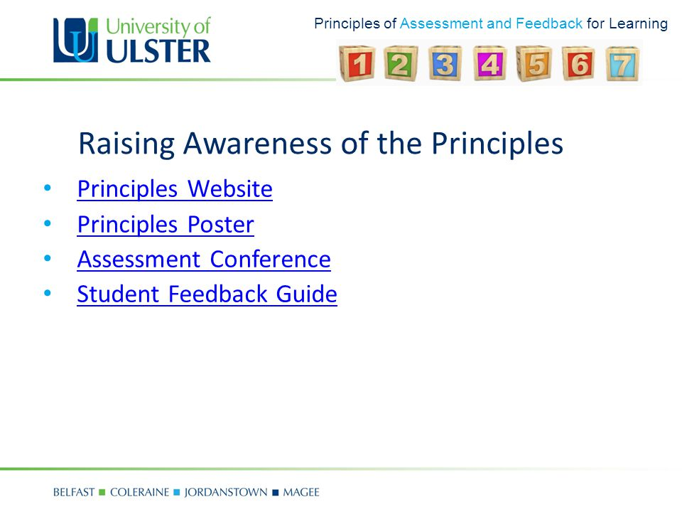 Principles of Assessment and Feedback for Learning Raising Awareness of the Principles Principles Website Principles Poster Assessment Conference Student Feedback Guide