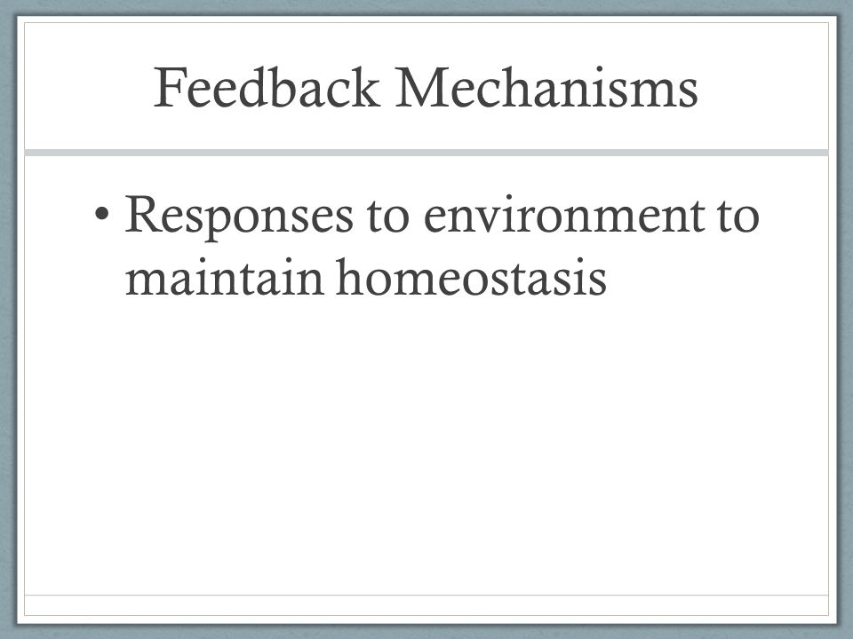 Feedback Mechanisms Responses to environment to maintain homeostasis