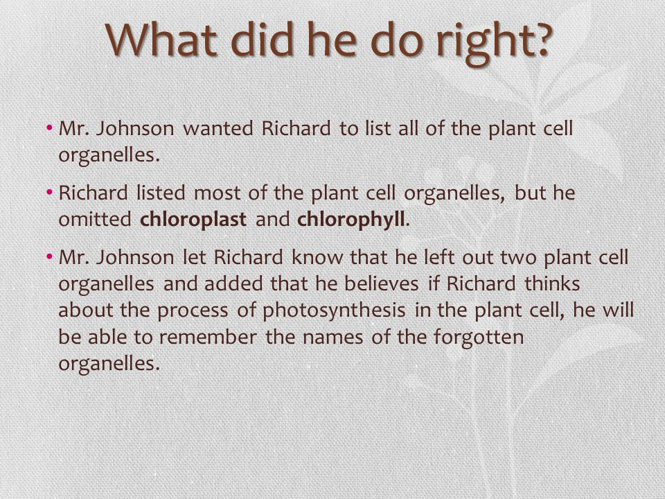 What did he do right? Mr. Johnson wanted Richard to list all of the plant cell organelles. Richard listed most of the plant cell organelles, but he om