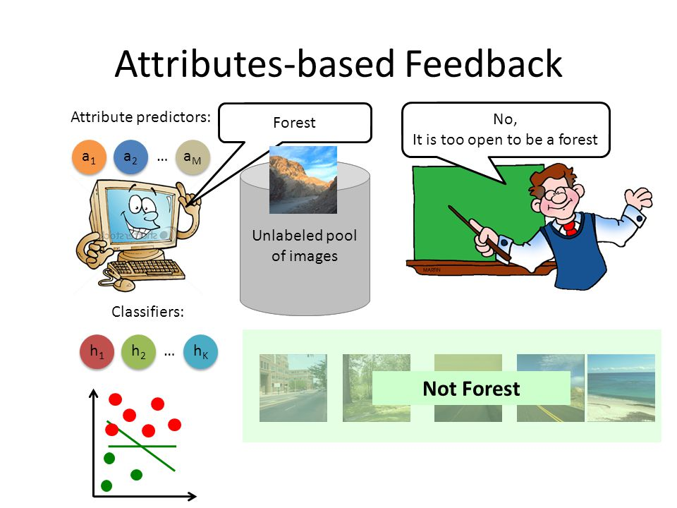 Attributes-based Feedback Unlabeled pool of images No, It is too open to be a forest Attribute predictors: a1a1 a2a2 aMaM … Forest Classifiers: h1h1 h2h2 hKhK … Not Forest