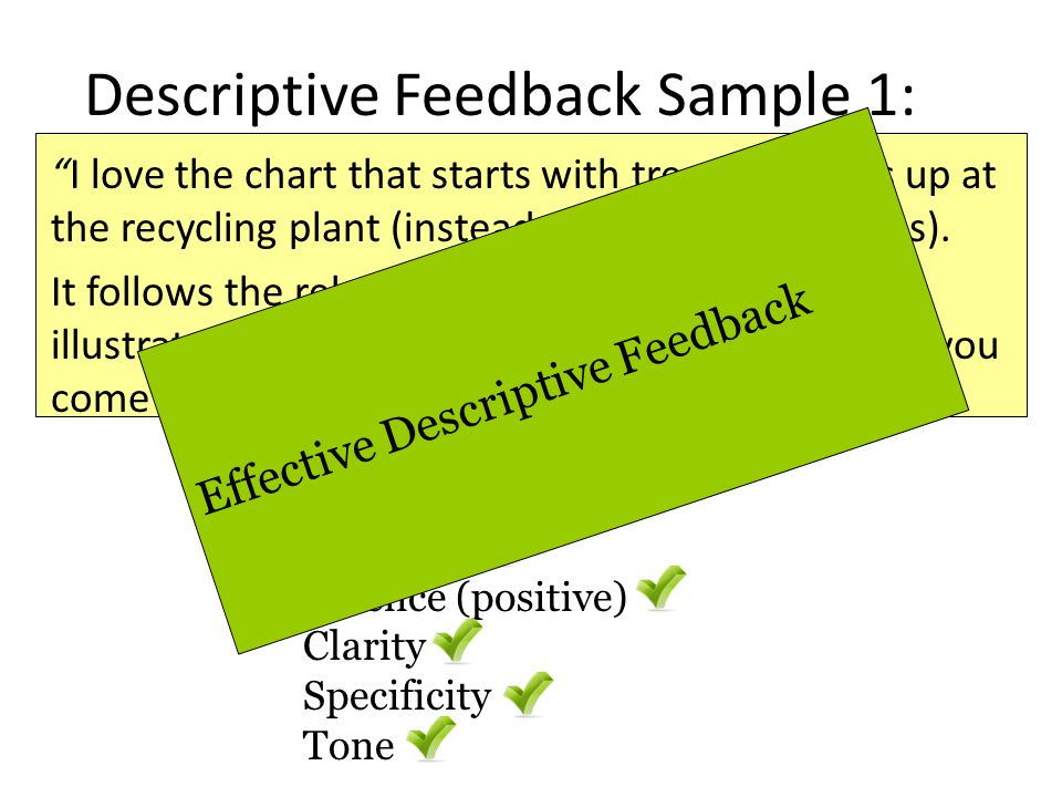 Descriptive Feedback Sample 1: I love the chart that starts with trees and ends up at the recycling plant (instead of back at more trees). It follows