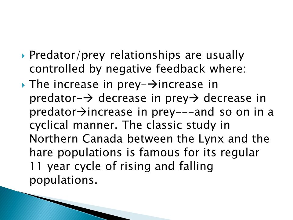 Predator/prey relationships are usually controlled by negative feedback where: The increase in prey- increase in predator- decrease in prey decrease in predator increase in prey---and so on in a cyclical manner.