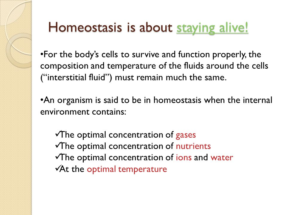 External Environment Internal Environment Homeostasis is about staying the same...