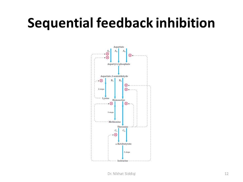 Sequential feedback inhibition Dr. Nikhat Siddiqi12