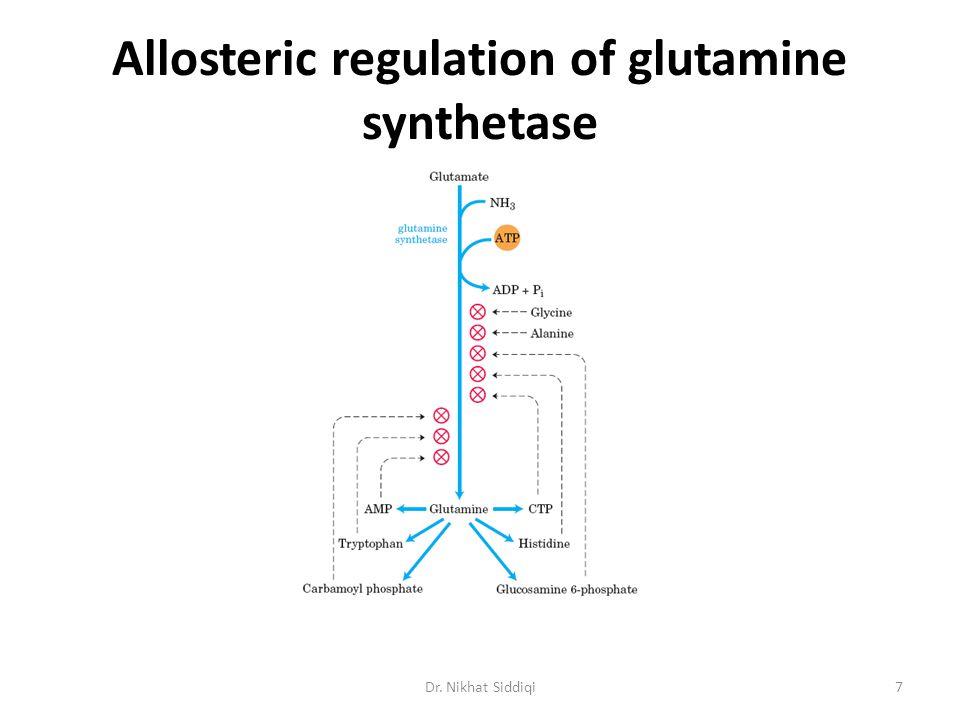 Allosteric regulation of glutamine synthetase 7Dr. Nikhat Siddiqi