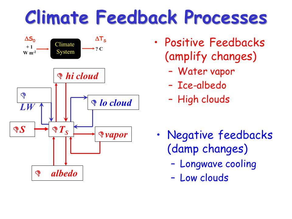 Climate Feedback Processes Positive Feedbacks (amplify changes) –Water vapor –Ice-albedo –High clouds DSDS DTSDTS D vapor D albedo D LW D hi cloud D lo cloud Negative feedbacks (damp changes) –Longwave cooling –Low clouds
