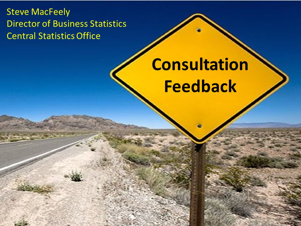 Consultation Feedback Steve MacFeely Director of Business Statistics Central Statistics Office