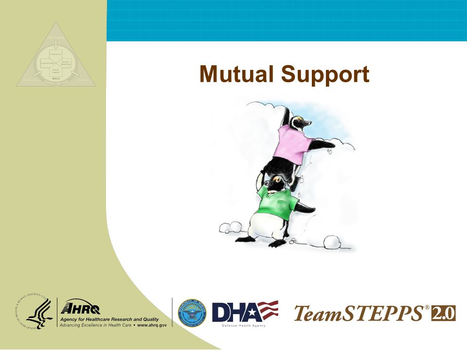 T EAM STEPPS 05.2 Mod 6 2.0 Page 12 Mutual Support 12 Advocate for the patient Invoked when team members viewpoints dont coincide with that of a decision maker Assert a corrective action in a firm and respectful manner Advocacy and Assertion