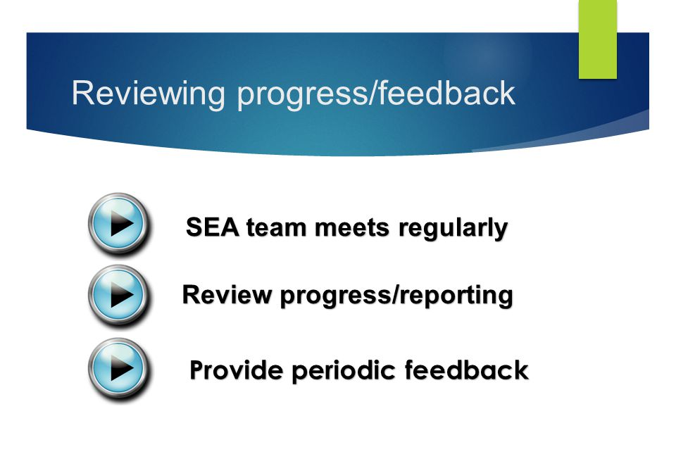 Reviewing progress/feedback SEA team meets regularly Review progress/reporting Provide periodic feedback