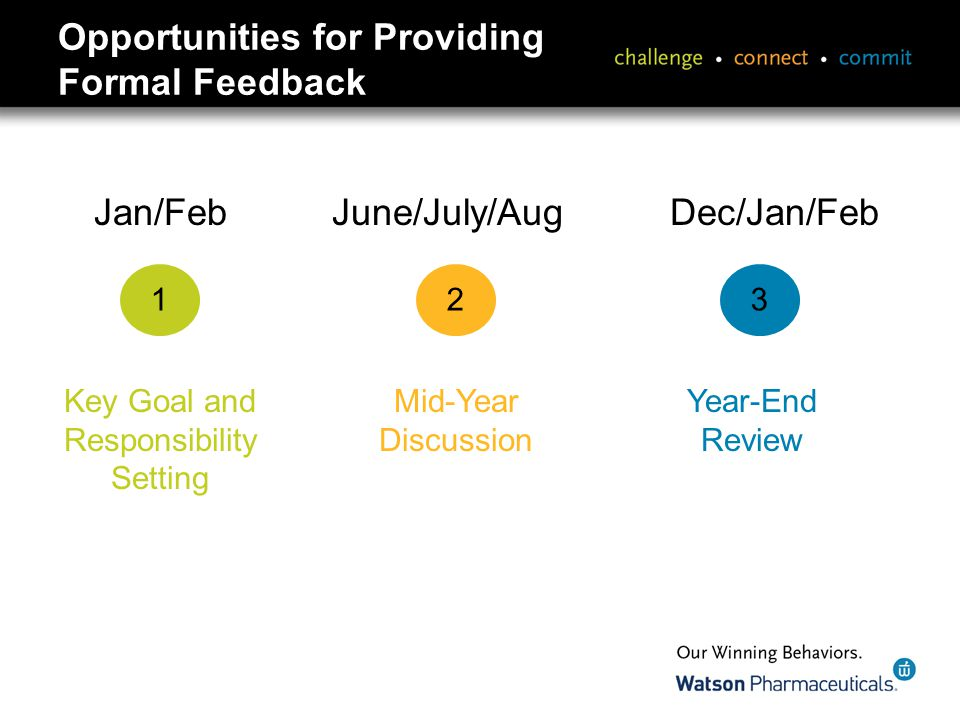 Opportunities for Providing Formal Feedback Jan/Feb June/July/Aug Dec/Jan/Feb 123 Key Goal and Responsibility Setting Mid-Year Discussion Year-End Review