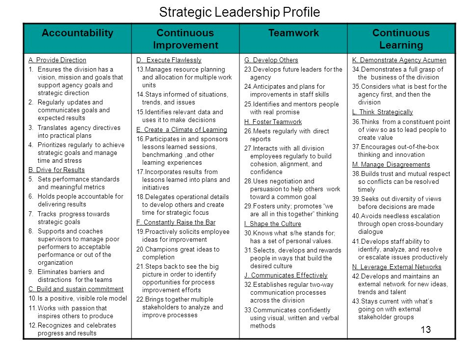 13 Strategic Leadership Profile AccountabilityContinuous Improvement TeamworkContinuous Learning A. Provide Direction 1.Ensures the division has a vis