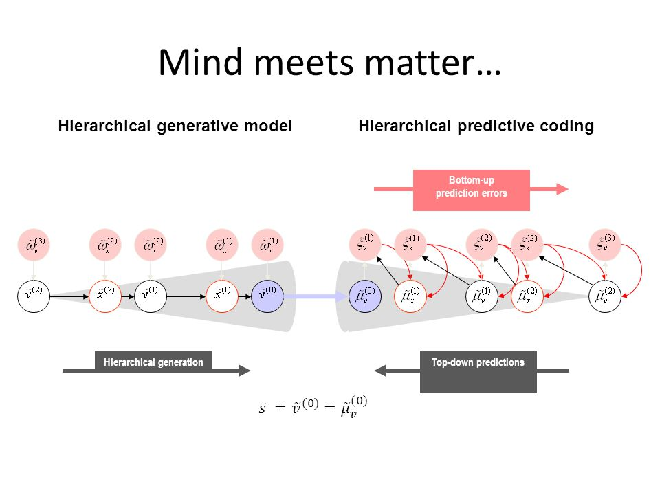 Top-down predictions Bottom-up prediction errors Hierarchical generation Mind meets matter… Hierarchical generative modelHierarchical predictive codin