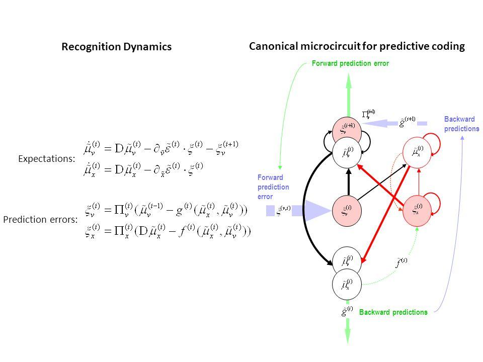 Backward predictions Forward prediction error Backward predictions Forward prediction error Expectations: Prediction errors: Recognition Dynamics Cano
