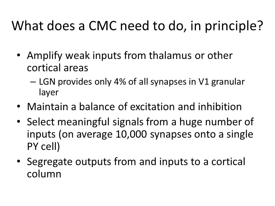 What does a CMC need to do, in principle? Amplify weak inputs from thalamus or other cortical areas – LGN provides only 4% of all synapses in V1 granu