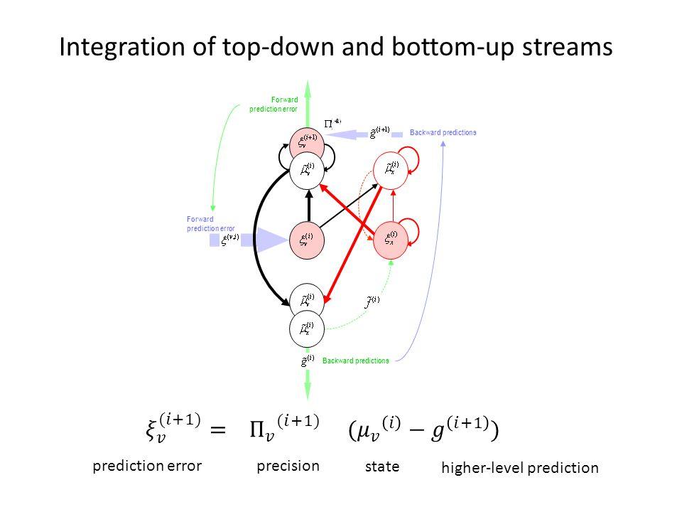 Integration of top-down and bottom-up streams Backward predictions Forward prediction error Backward predictions Forward prediction error prediction e