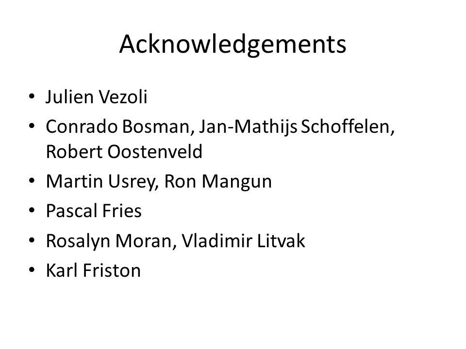Acknowledgements Julien Vezoli Conrado Bosman, Jan-Mathijs Schoffelen, Robert Oostenveld Martin Usrey, Ron Mangun Pascal Fries Rosalyn Moran, Vladimir