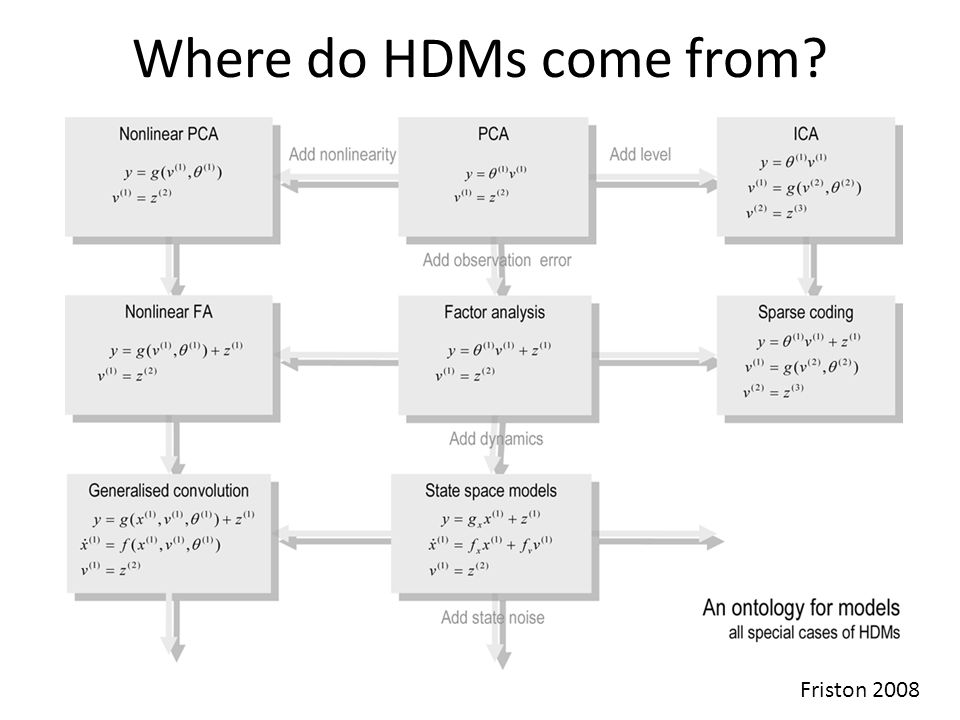 Where do HDMs come from? Friston 2008