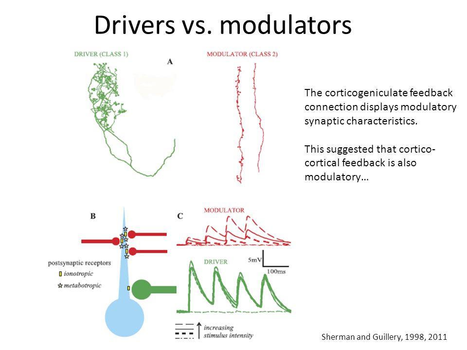 Drivers vs.