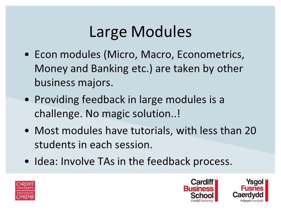 Large Modules Econ modules (Micro, Macro, Econometrics, Money and Banking etc.) are taken by other business majors.