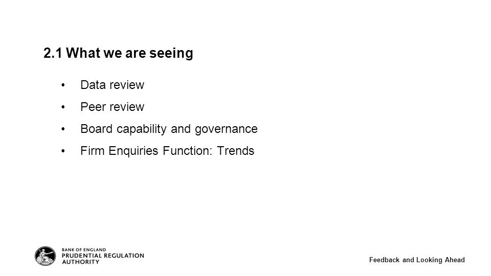 2.1 What we are seeing Data review Peer review Board capability and governance Firm Enquiries Function: Trends Feedback and Looking Ahead