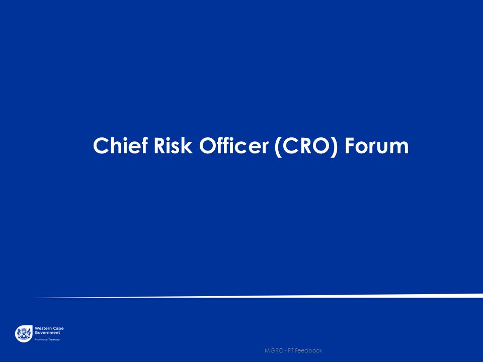 Chief Risk Officer (CRO) Forum 3 MGRO - PT Feedback