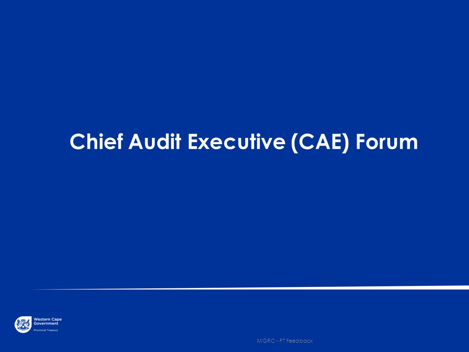 Chief Audit Executive (CAE) Forum 5 MGRO - PT Feedback