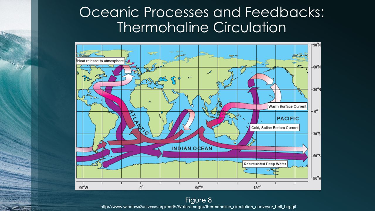 Oceanic Processes and Feedbacks: Thermohaline Circulation Figure 8 http://www.windows2universe.org/earth/Water/images/thermohaline_circulation_conveyor_belt_big.gif
