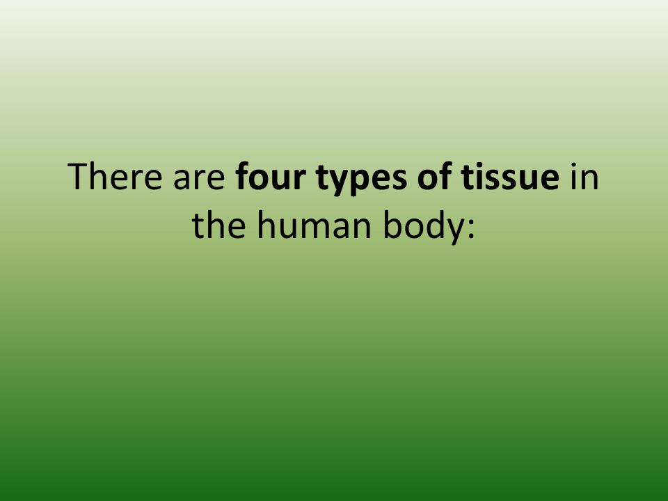There are four types of tissue in the human body: