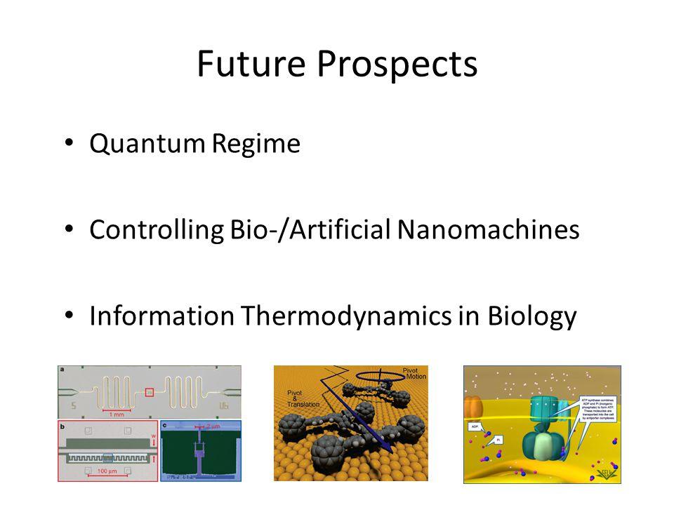 Future Prospects Quantum Regime Controlling Bio-/Artificial Nanomachines Information Thermodynamics in Biology