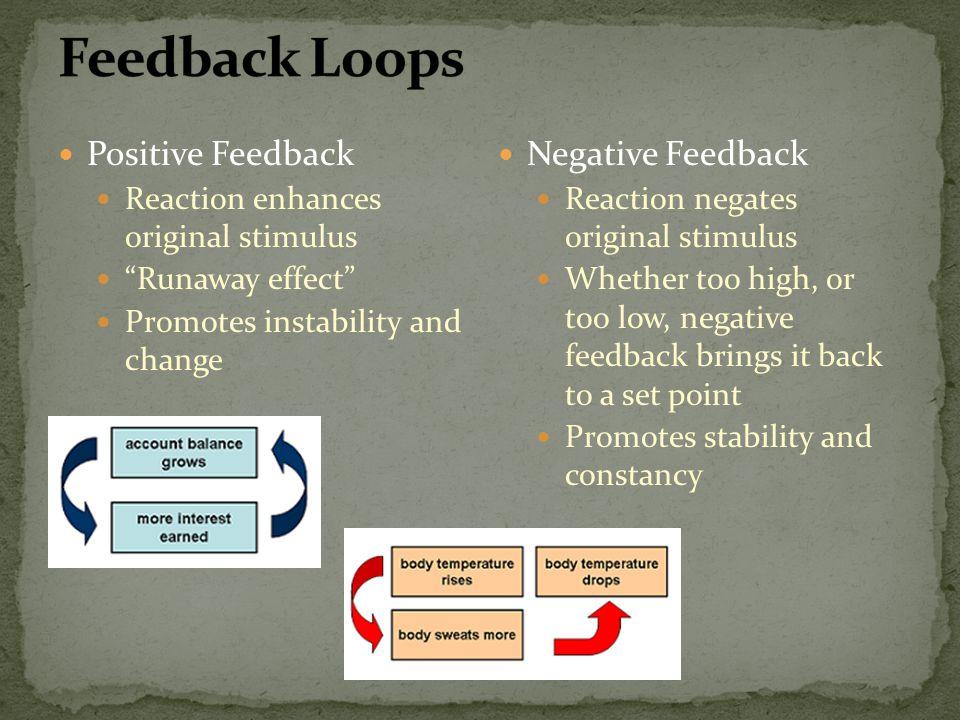 Positive Feedback Reaction enhances original stimulus Runaway effect Promotes instability and change Negative Feedback Reaction negates original stimu