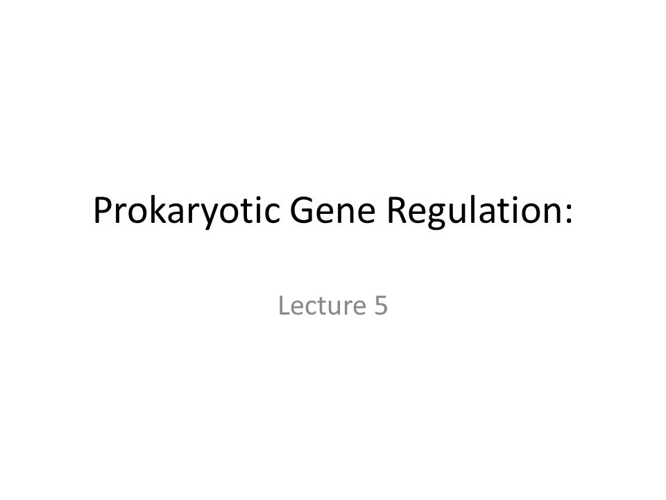 Prokaryotic Gene Regulation: Lecture 5