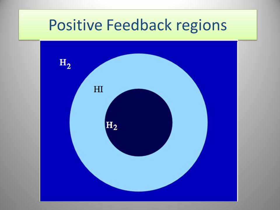 Positive Feedback regions