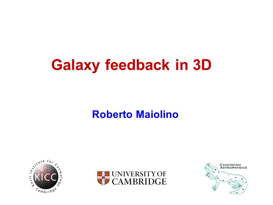 Galaxy feedback in 3D Roberto Maiolino