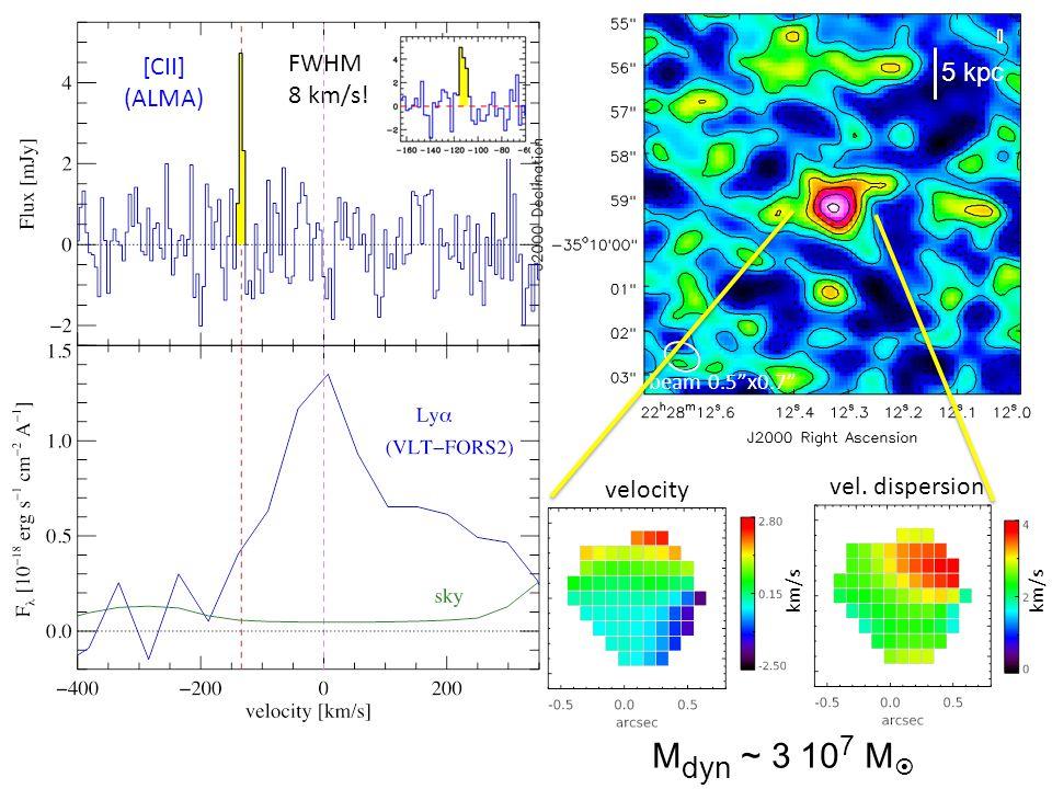 FWHM 8 km/s! 5 kpc beam 0.5x0.7 velocity vel. dispersion km/s M dyn ~ 3 10 7 M [CII] (ALMA)