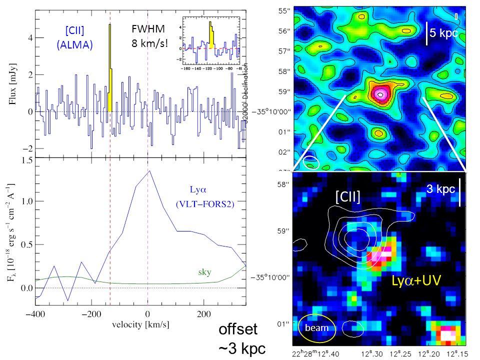 FWHM 8 km/s! [CII] Ly +UV 5 kpc 3 kpc beam [CII] (ALMA) offset ~3 kpc
