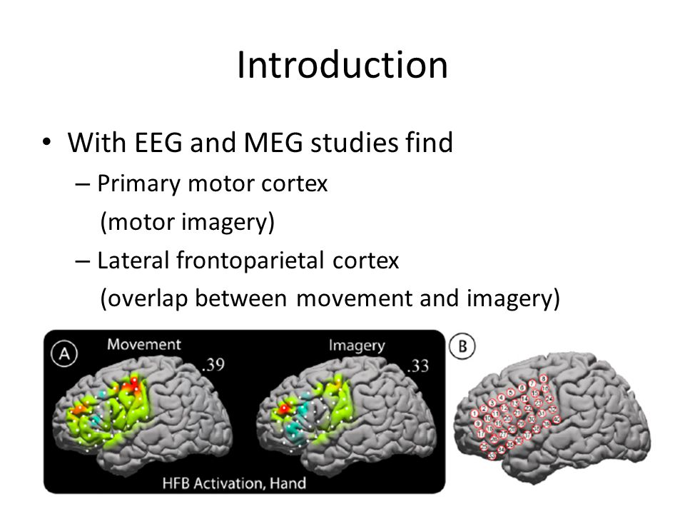Introduction With EEG and MEG studies find – Primary motor cortex (motor imagery) – Lateral frontoparietal cortex (overlap between movement and imagery)